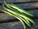 'Jade' Green Beans