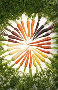 Carrots come in a rainbow of colors