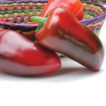 'Pizza' peppers are thick-walled, heavy, and crunchy, the perfect topping for a pizza.