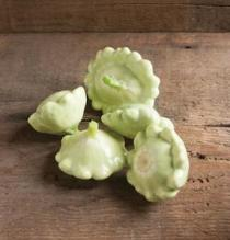 'Benning's Green Tint' are pale green, dense, and meaty patty pan squash.