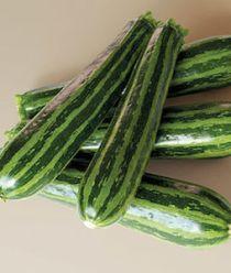 'Summer Green Tiger' zucchini have dark green skin with regular, lighter ribs for a striking slice.