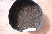 Smart Pot Partially Filled with Basic Potting Soil Recipe
