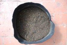 Organic Soil Amendments in a Smart Pot—Mixed In
