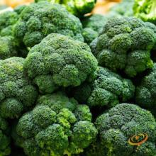Heirloom Broccoli Varieties-'Calabrese'