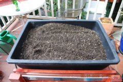 Seed Starting–Start with Good Potting Soil