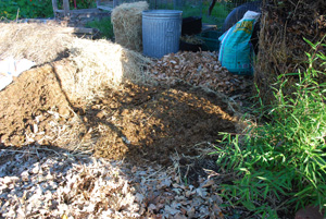 """Add a 2-3"""" Green Layer…or in this Case, Brown (Horse Manure)"""