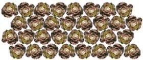 Hexagonal Spacing