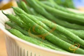 Bush Bean Varieties-'Provider'