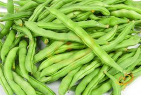 'Kentucky Wonder' Pole Beans