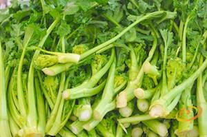 Rapini, or Broccoli Raab