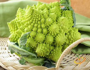 Broccoli Varieties—'Romanesco'