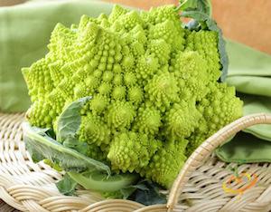 Broccoli Varieties—'Romanesco'