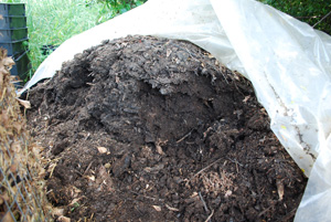 Finished Compost Pile