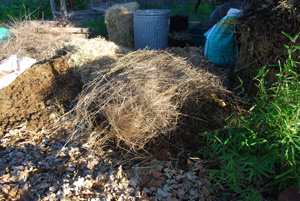 Add Another Brown Layer—In This Case, Coarse Grass Stalks