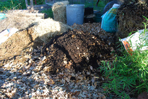 When the Compost Pile is Built Up a Third of the Way, Add a High-Nitrogen Layer, to Build Some Heat