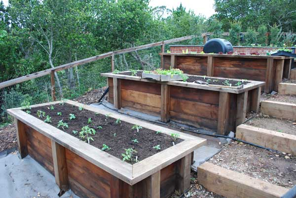 Organic Garden Consulting and Design in the San Francisco Bay Area