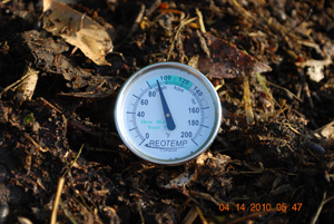 Compost Pile Temperature After First Turning
