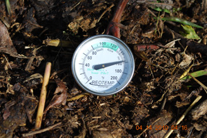 Compost Pile Temperature Before First Turning
