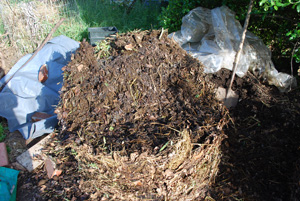 Compost Pile First Turning