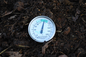 Compost Pile Temperature After Second Turning