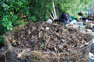 Compost Pile Before Second Turning
