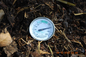 Compost Pile Temperature Before Second Turning