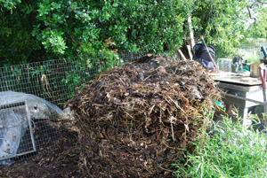 Compost Pile Second Turning