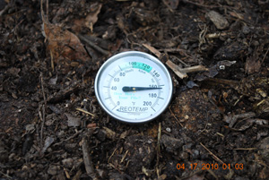Compost Pile Temperature Before Third Turning