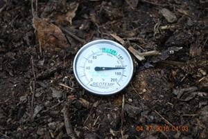 Compost Pile Temperature Before Third Turning