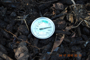 Compost Pile Temperature Before Fourth Turning