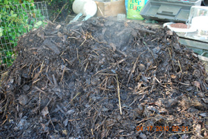 Compost Pile Turning