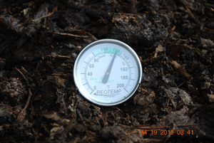 Compost Pile Temperature After Fifth Turning