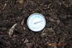 Compost Pile Temperature Before Fifth Turning