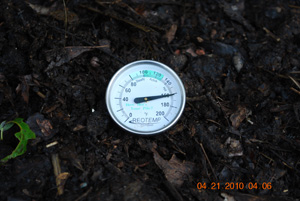 Compost Pile Temperature Before Sixth Turning