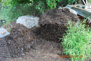 Compost Pile Sixth Turning