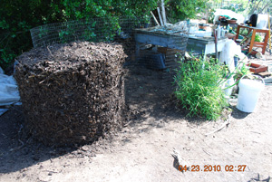 Compost Pile Before Seventh Turning