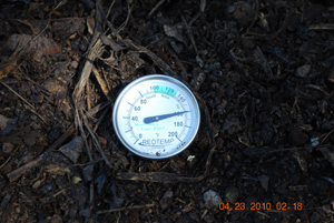 Compost Pile Temperature Before Seventh Turning