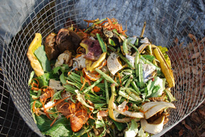 Kitchen Scraps are a Great Addition To Compost Piles