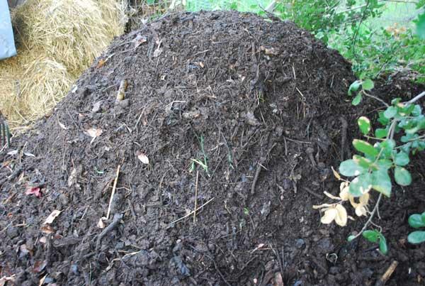 20 reasons to diy compost