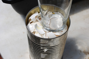 Crush Dried Eggshells Down into Can with the Bottom of a Glass or Jar