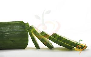 'Tendergreen' Burpless Slicing Cucumbers
