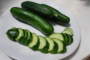 Container Cucumber 'Bush Slicer'