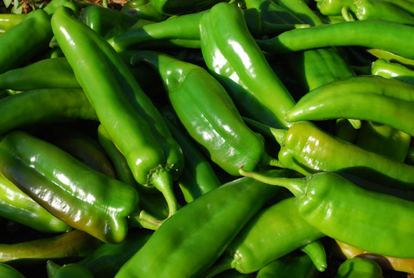 Growing Hot Peppers, How to Grow Hot Peppers, Growing Chilies
