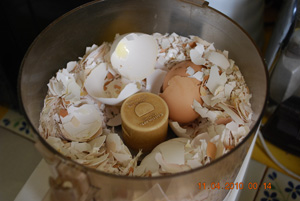 Use a Food Processor to Grind the Eggshells into a Coarse Powder
