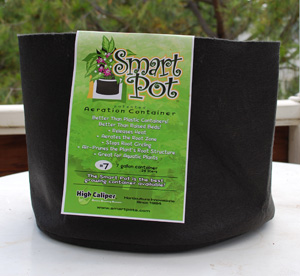 7-Gallon Smart Pot