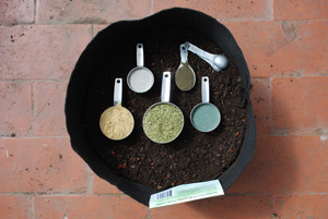 Organic Soil Amendments for Heavy Feeding Container Vegetables