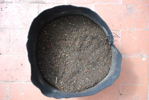 Organic Soil Amendments in a Smart Pot—Mixed In