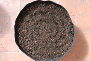 Potting Mix in a Smart Pot