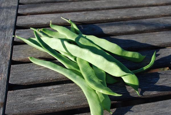 green beans fried green beans green beans with coconut spanish green ...