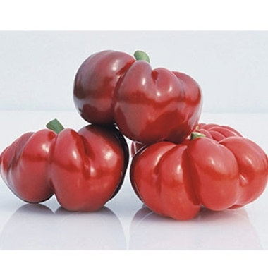 'Round of Hungary' Red Pimiento Peppers